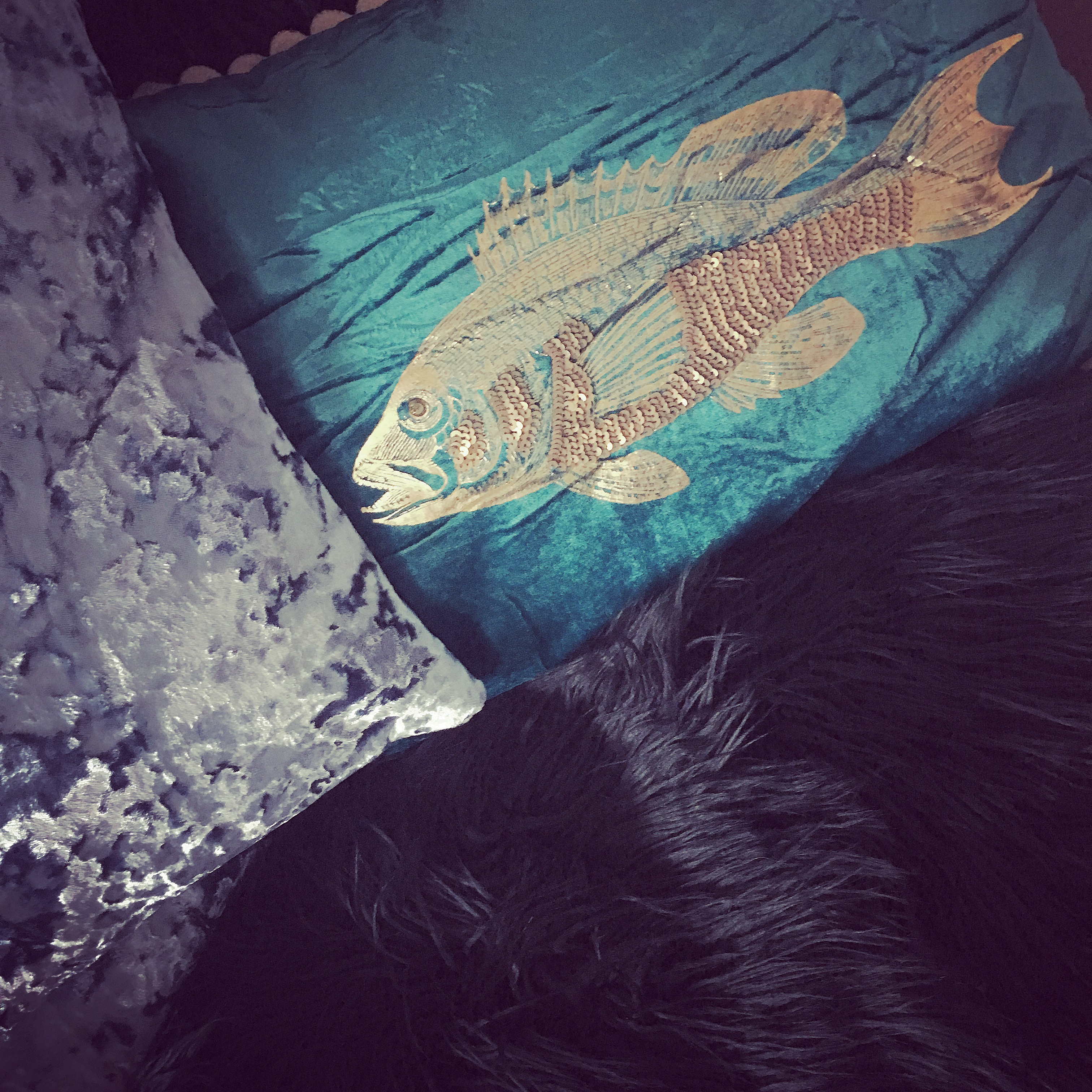 You can't beat a turquoise velvet cushion with a gold sequinned fish :)