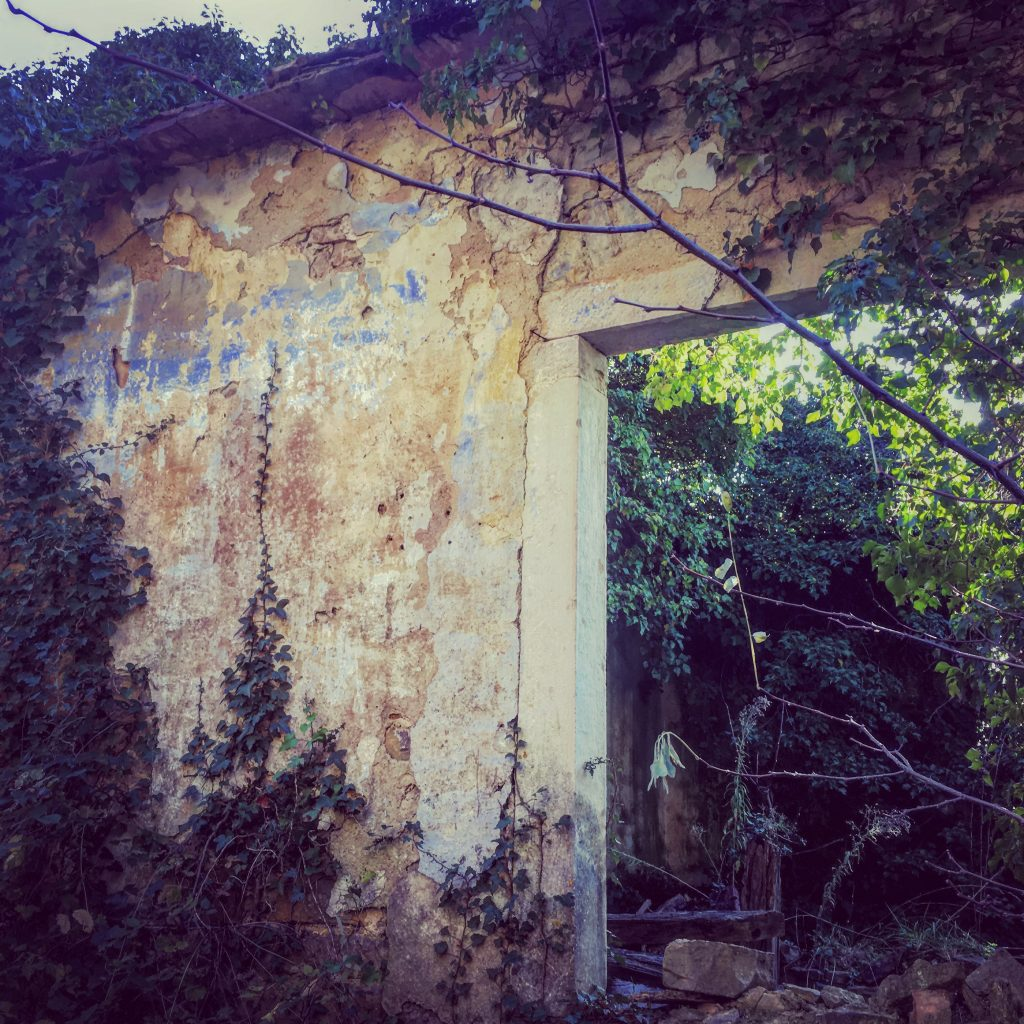 Abandoned houses of Istria...