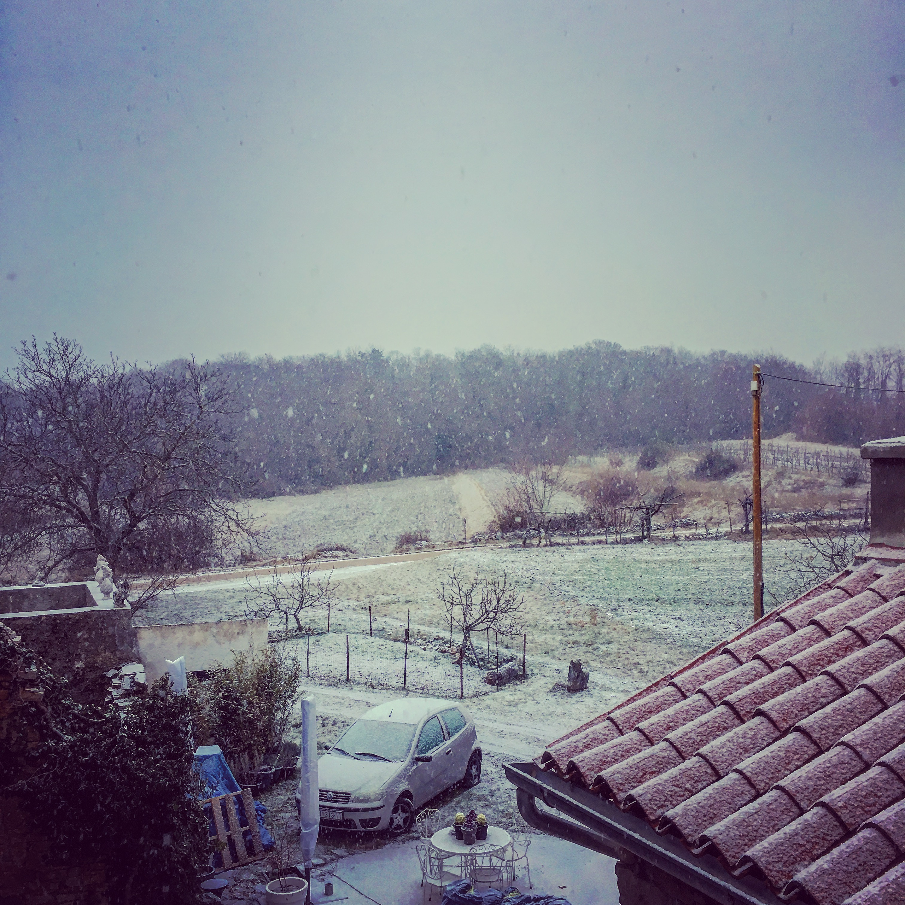 View from front bedroom window