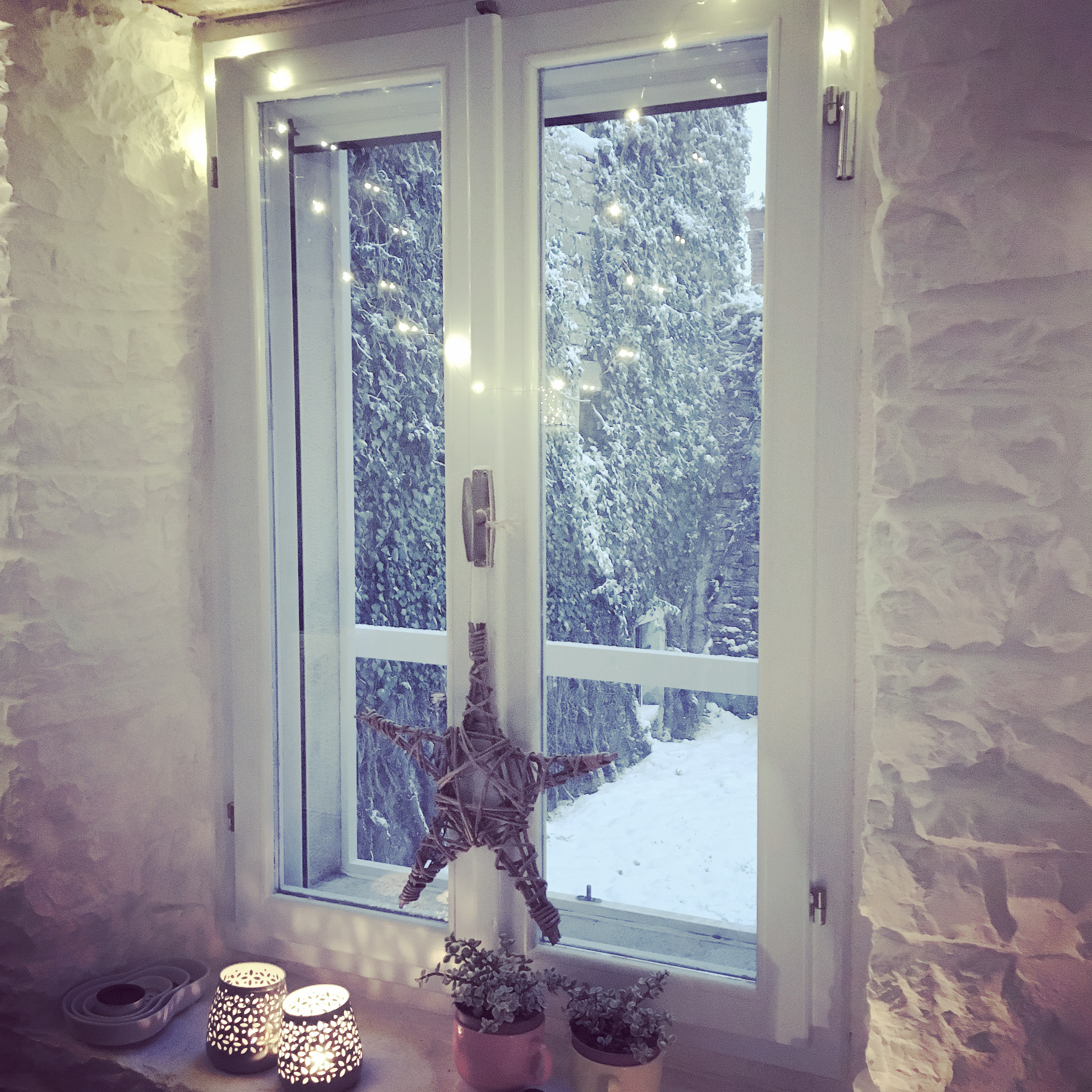 Warm & cosy in the house as the snow continues to fall.
