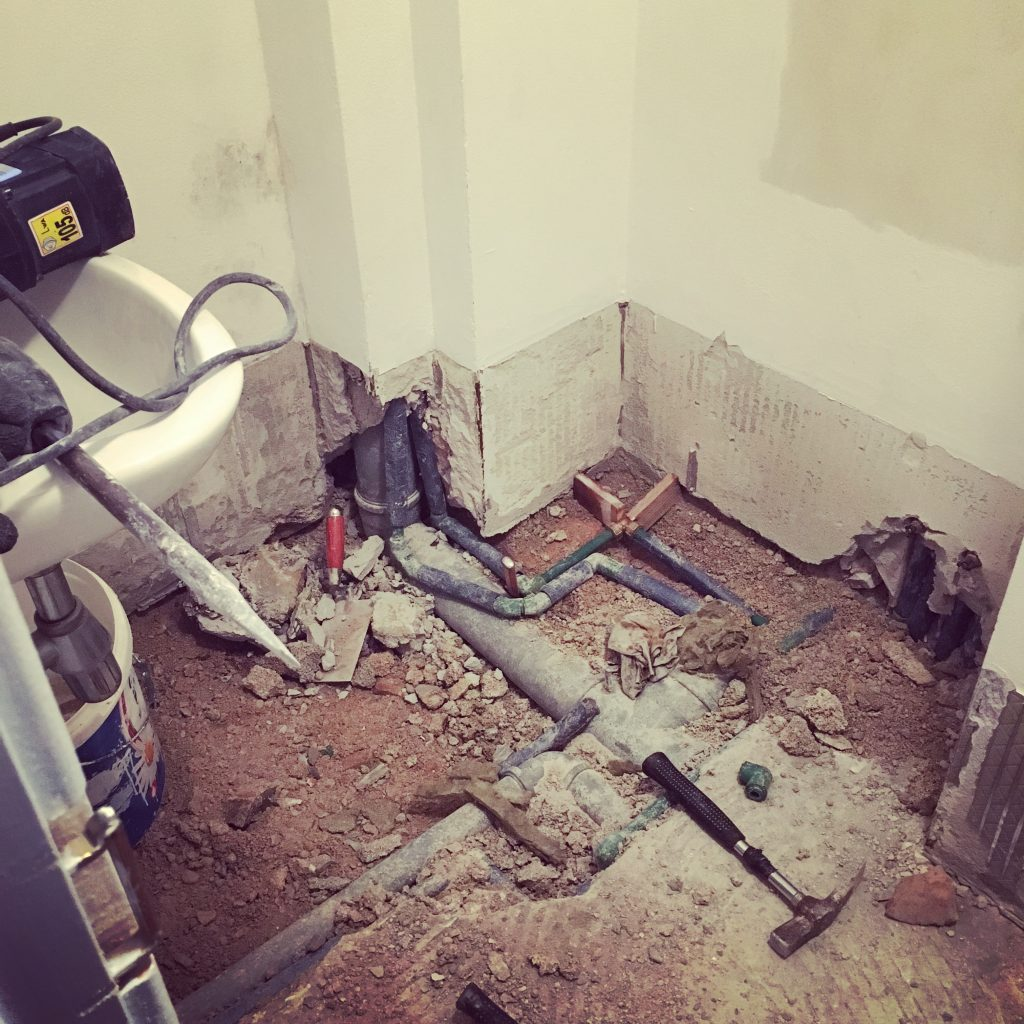 Downstairs bathroom ripped out & work starting...