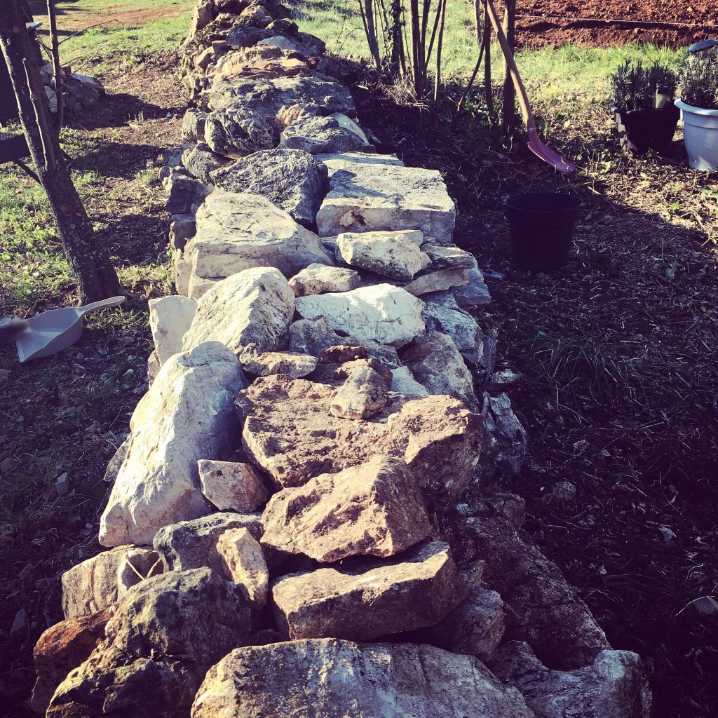 Stone by stone, the wall is being rebuilt and made secure. Who knew we'd be turning out hands to dry stone walling?